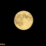 Lorinda's Hay Moon over Whidbey (500x381)