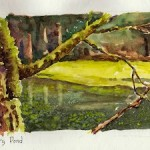 Copyright Lois Mathews Quarry Pond