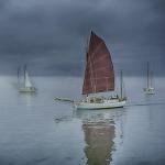 sailboat-redSAIL-Square