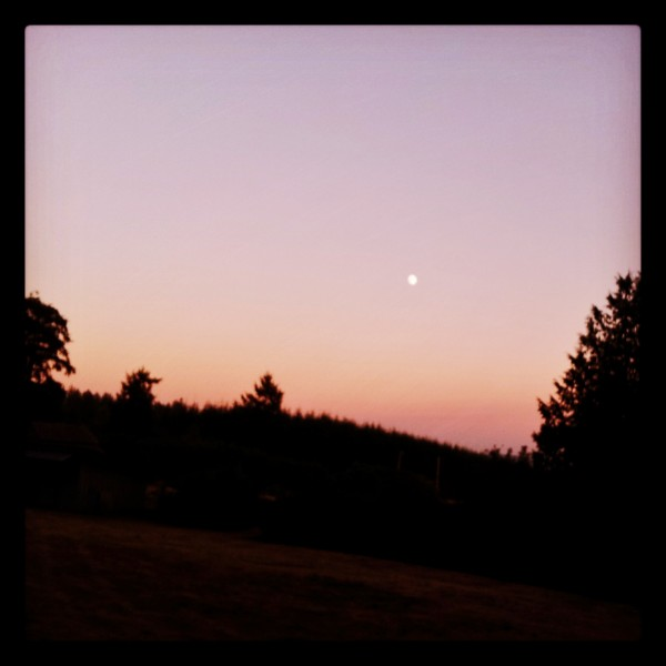 The moon rose over Deer Lagoon as seen from Meadow House on July 19, 2013. (Patricia Duff Instagram photo)