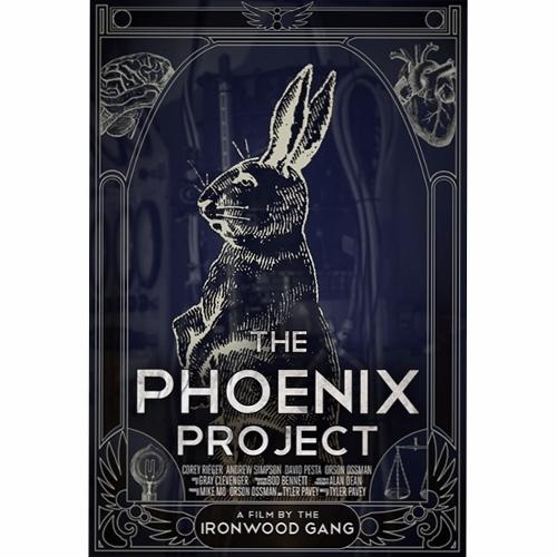 Pheonix Project (500x500)