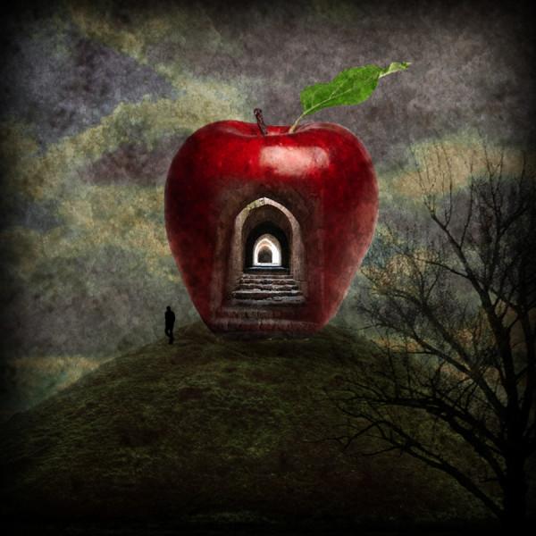 Stadler Apple