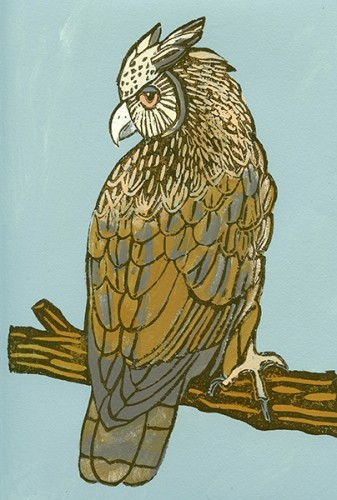 """""""Dusky Eagle Owl""""Mixed Media,18""""Hx14""""W framed©Meredith MacLeod http:/meredithmacleodartist.com/ image for sale-contact Museo Gallery"""