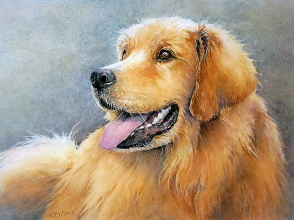 A Portrait of Buster–Commission;WC;9x12