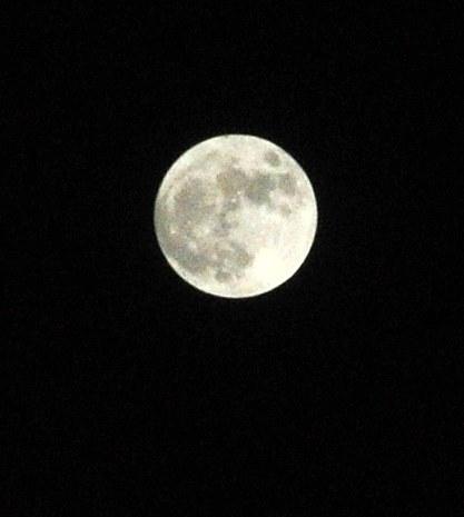 Long Night Moon by Lorinda Kay Dec. 12, 2013 121713 (417x465)