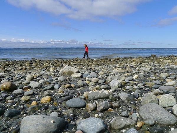 Boys on the Beach  (photo by Sarah Gillett)