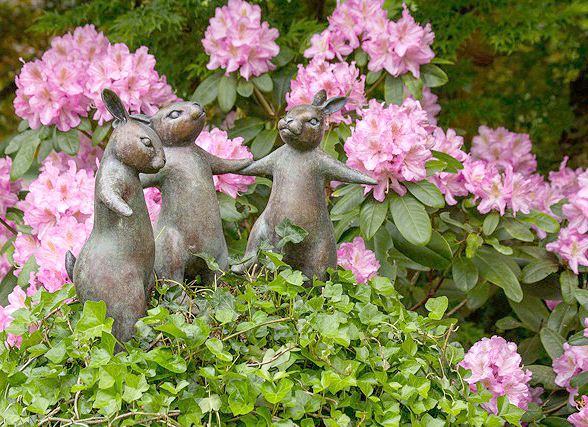 Rabbits celebrating the rhodedrondrons  (photo by David Welton)
