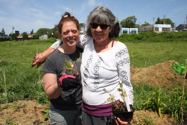 Project co-chair Netsah Zylinsky plants herbs with volunteer Rohini Ray