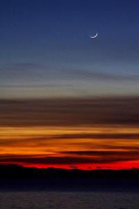 Sunset moon  (photo by Matt Wilcox)