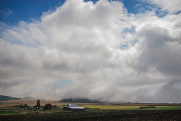 Willowood Farm on Ebey's Prairie (photo credit David Welton)
