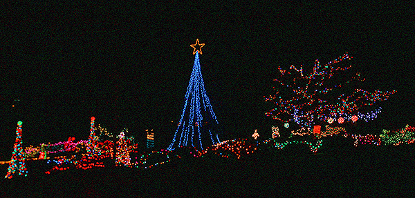 12.Cooks Park Lights two