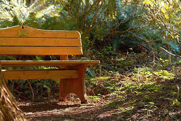 Meerkerk bench