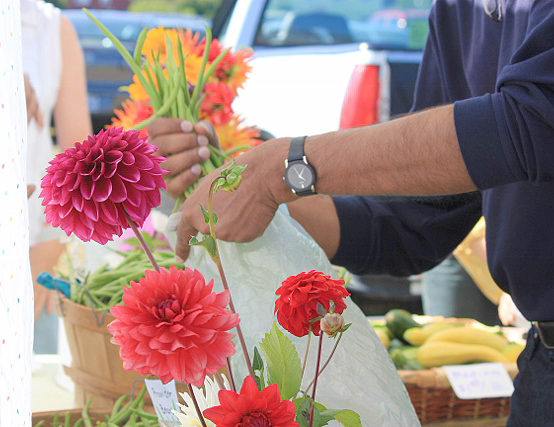 It's the season again! If we aren't growing flowers, then we're buying them at our local farmers markets and roadside stands.    (photo by Martha McCartney)