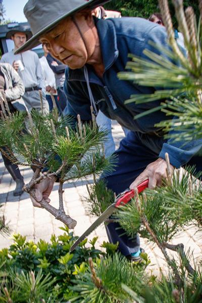 2.Pruning Seminar_0110