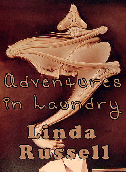 Book cover for Adventures in Laundry (image courtesy of Short Story Smash artists)