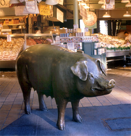 """Rachel"" the pig, in a rare moment of solitude, at Pike Place Market (photo courtesy of the artist)"