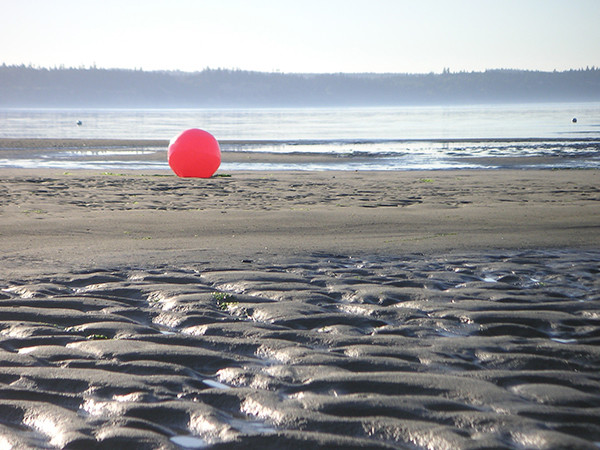 A beach ball at low tide on Double Bluff Beach in Freeland