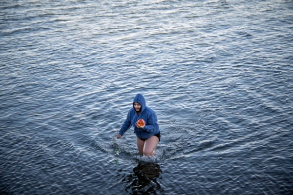 This intrepid person waded into the frigid waters of Saratoga Passage to retrieve her orange globe, anchored to a glass seastar.