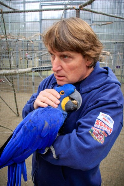 Mark Hockett cuddles Clarence, a hyacinth macaw with a three-foot wingspan.