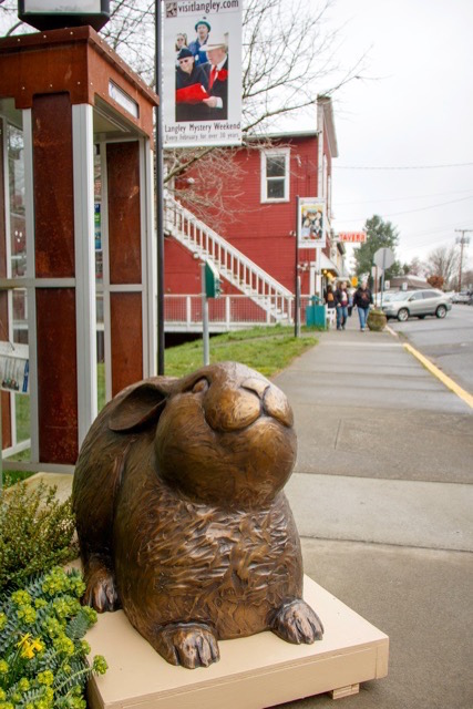 Georgia Gerber's bronze bunny surveys the scene during Langley's Mystery Weekend Feb. 27-28. As far as she's concerned, Langley is the perfect home for bunnies.