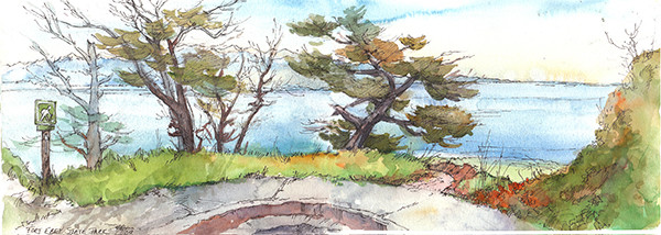 Hiking Trail at Fort Ebey (sketch by Faye Castle)