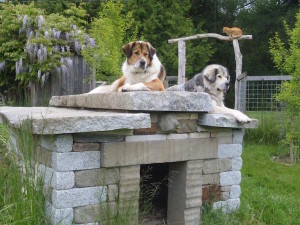 Morosco's Tibetan Mastiffs rest on their stone dog house (photo courtesy of the artist)