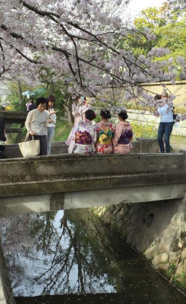 blog-photo-11