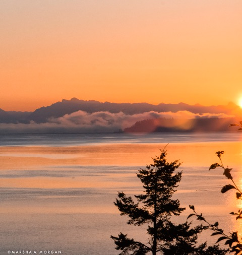Foggy sunrise often gives way to a spectacular crystal clear day