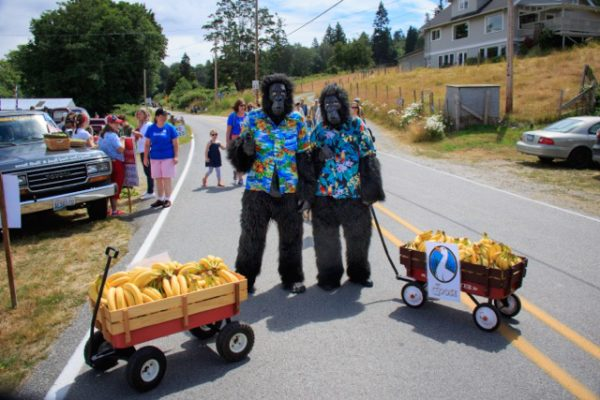 This year TWO gorillas shared their bananas, courtesy of The Goose Grocer.