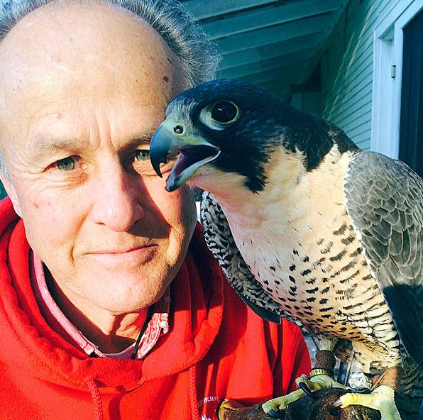 Steve Layman with Falcon (photo courtesy of Steve Layman)