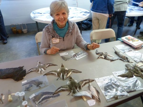 Watercolorist and avid birder Frances Wood hosts a past Bird in the Hand (photo by Julie Dougherty Winger)