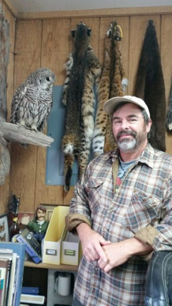 Matt Klope's talent with preserving birds such as this barred owl, are considered museum quality by the Whidbey Audubon Society (photo by Kate Poss)