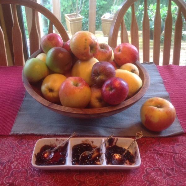 One taste, many flavors: gleaned chutney (photo by Judith Walcutt)