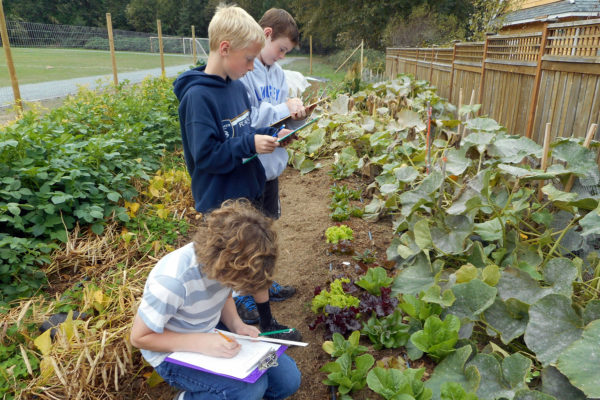 Kids in garden writing in notebooks.