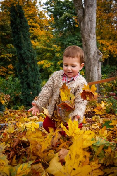 A child frolics in treefall from the bigleaf maple.