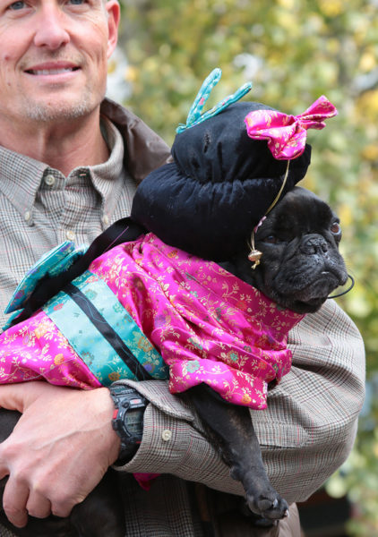 Man holding black dog in costume.