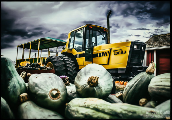 A tractor pulling a trailer with a pile of squash in foreground.