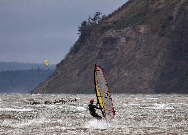 October winds stir up a favorite pastime: to windsurf with migratory birds at Double Bluff.