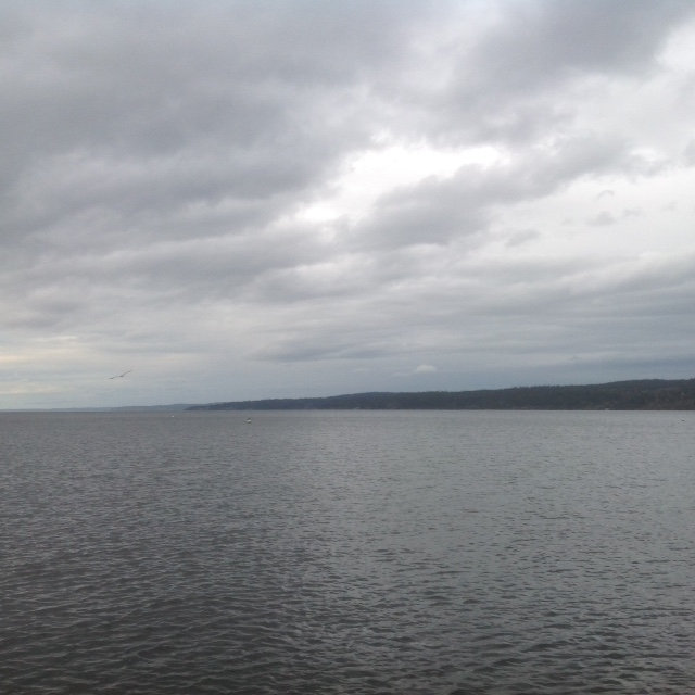 Water with land and clouds in background