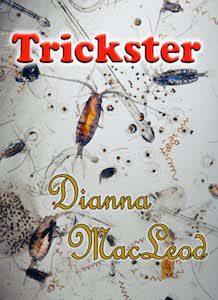 """Cover"" illustration for Trickster"